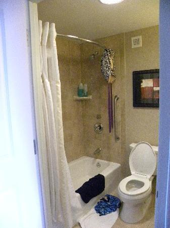 Hilton Garden Inn Toledo Perrysburg: Spacious bathroom