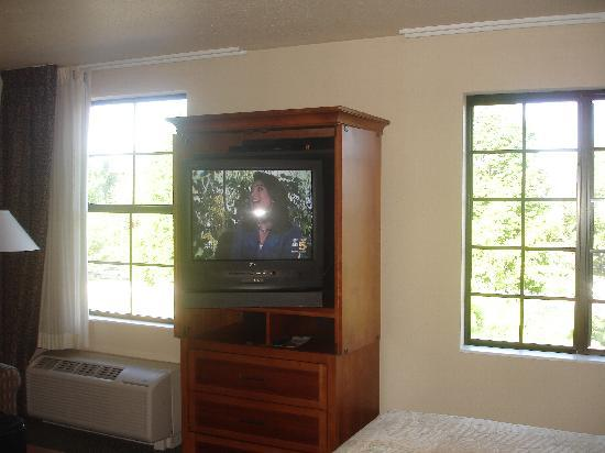 Staybridge Suites Lincolnshire: TV cabinet