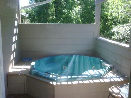 Sycamore Mineral Springs Resort And Spa: Patio Jacuzzi