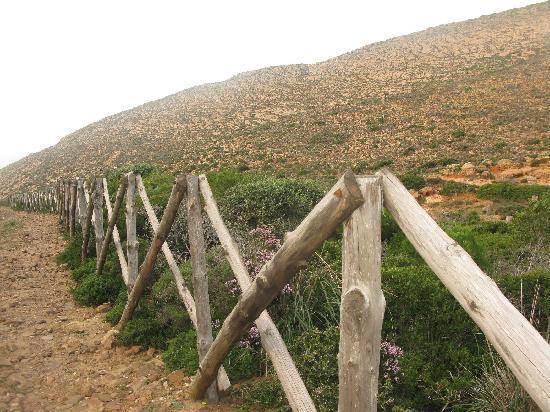 la montagne d el haouaria