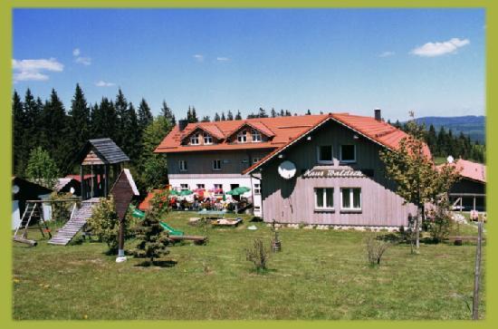 Hotels In Philippsreut Deutschland