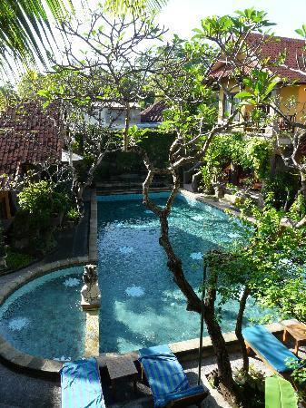 Puri Mesari: Blick auf den Pool vom Zimmer 202