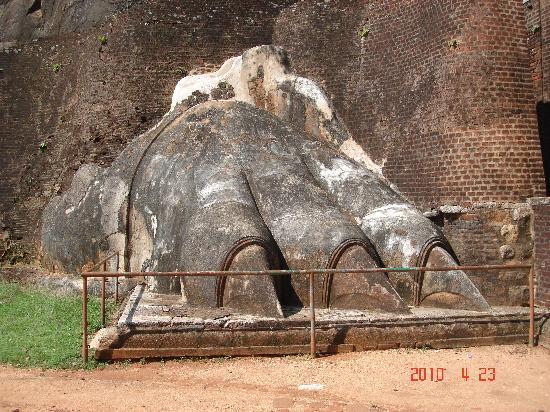 Sigiriya, Sri Lanka: シギリアの石のライオンの足