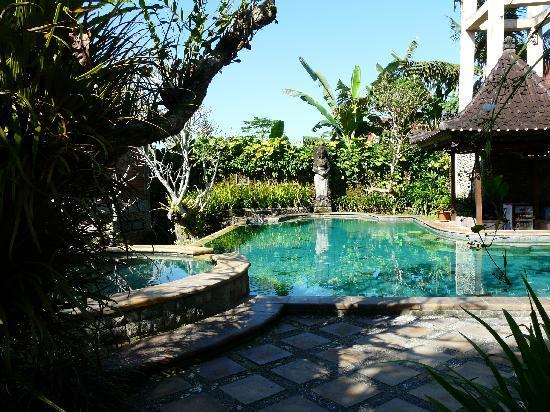 Ubud Bungalow: ein Platz zum Erholen, der ansprechende Pool