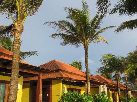 Chongfah Beach Resort: der Bungalow