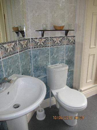 Ambleside Lodge: Loo and sink in bathroom!