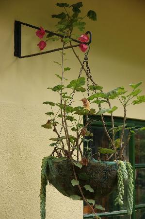 FlameTree Restaurant : Flower in the reataurant