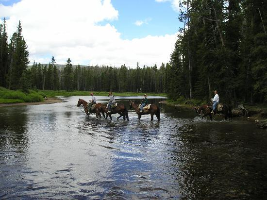 Skyline Guest Ranch and Guide Service : Trail ride crossing the Clark Fork River