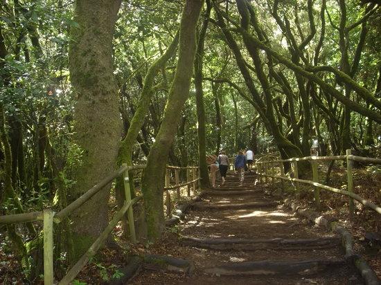 加拉霍埃国家公园