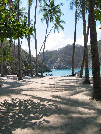 Casas Colibri Montezuma: Tortuga Island