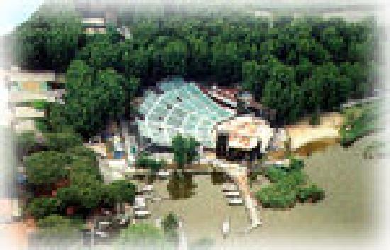 Hotel Lupori: Puccini theatre on the lakeside