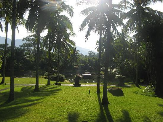 The Farm at San Benito: View in the morning during yoga-session