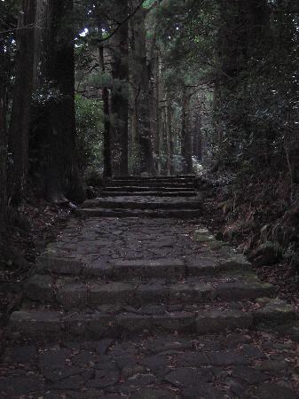 Kumano Kodo: 那智熊野大社への古道