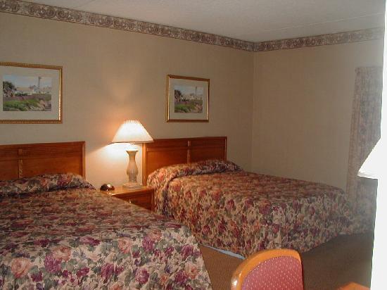 Mountain Laurel Resort & Spa: Bedroom View