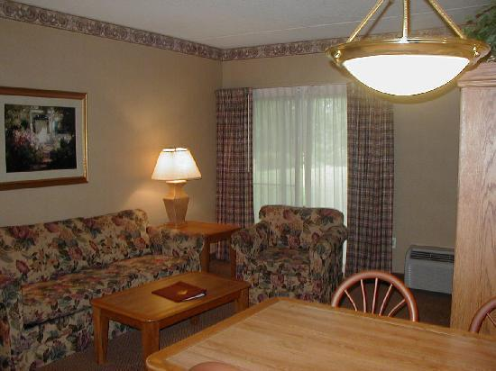 Mountain Laurel Resort & Spa : Living/Dining Area