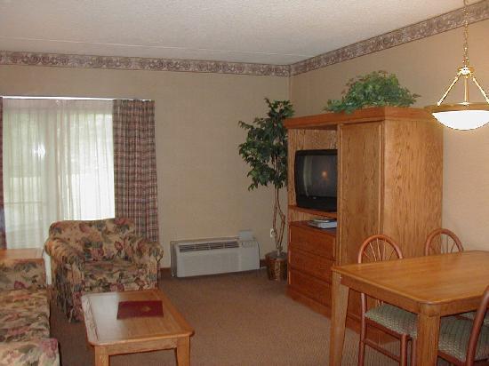 Mountain Laurel Resort & Spa : Living/Dining Area