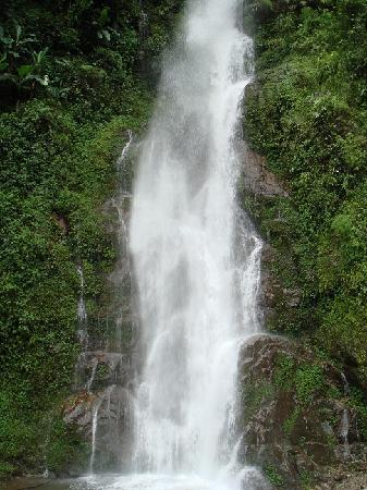 Pelling, India: 1 of many waterfalls.