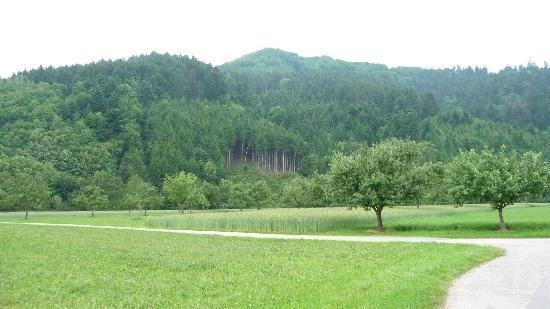 Zur Alten Brücke: bike trail scenery
