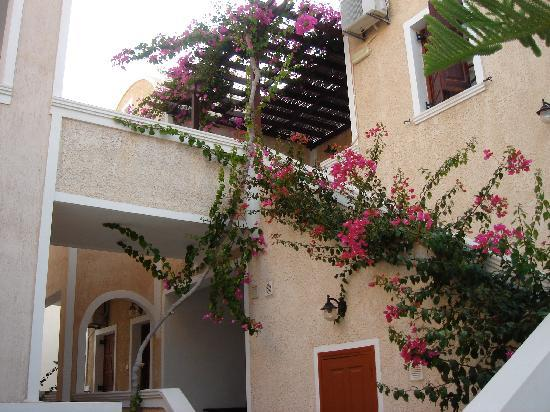 Enjoy Villas: The view up to our room