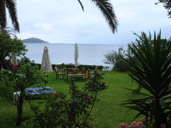 Angeliki Beach Hotel: The garden of the hotel and Aegean in the background