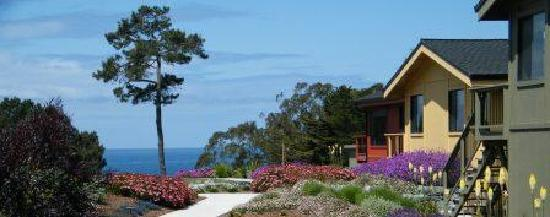 Cottages at Little River Cove: Ocean Views and Flowering Gardens