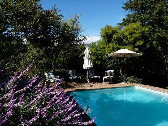 The Garden House: Lovely pool & loungers