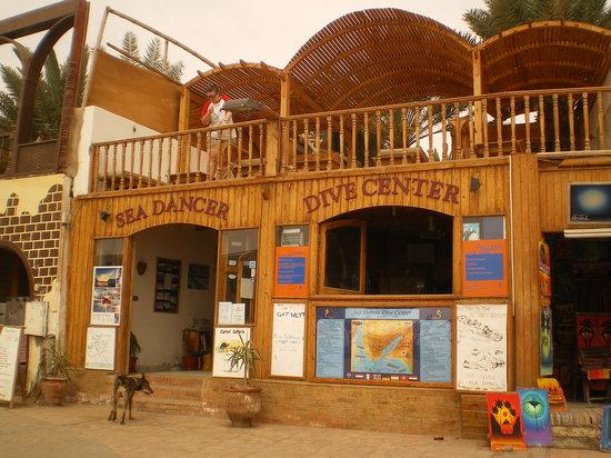 Sea Dancer Dive Center: Sea Dancer Dahab