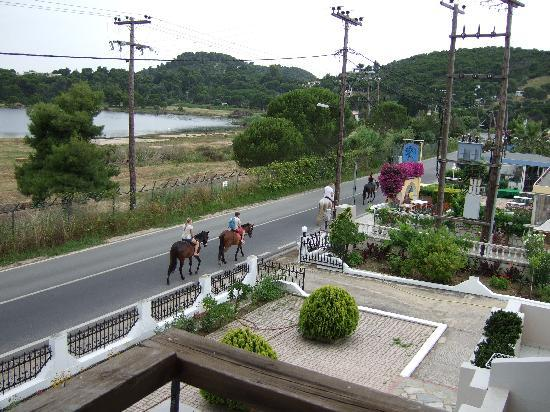 Koukounaries, Greece: Horseriding available - just up the road