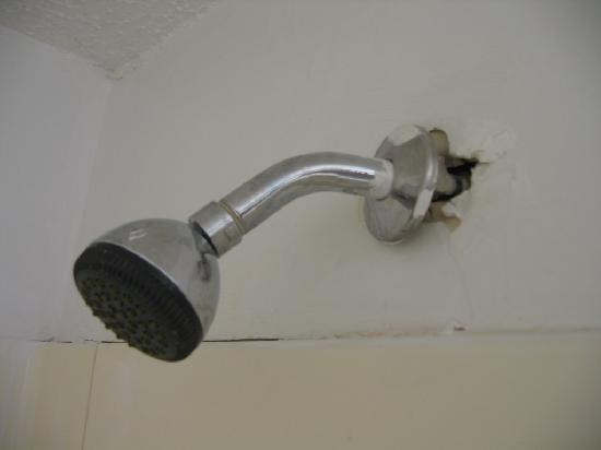 Midtown Inn: Room 118. Shower nozzle coming out of raw hole punched in wall.