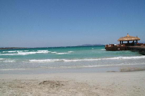 Sheraton Cesme Hotel Resort & Spa: Die Bar auf dem Meer - traumhaft....