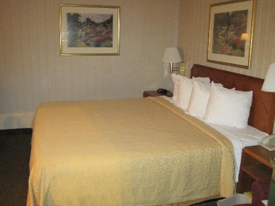 كواليتي إن إيست سيراكيوز: The Bed