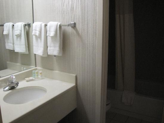 كواليتي إن إيست سيراكيوز: Bathroom area