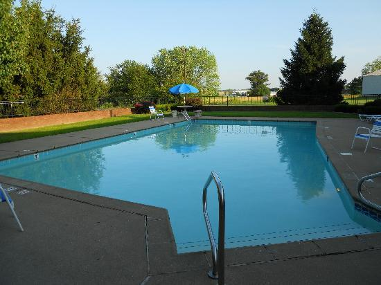 Best Western Campbellsville Inn: hotel pool