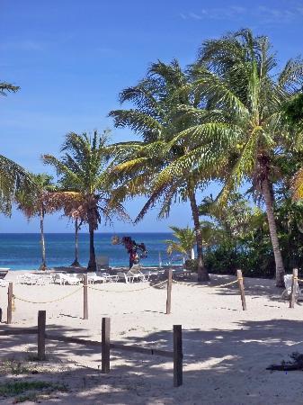 Beach in front of Casa de Paradise