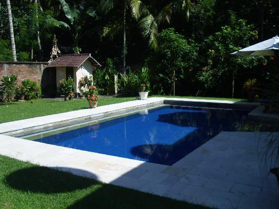 Yuli's Homestay: Swimming pool