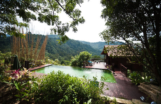 Seremban, Malaysia: Pool and dining patio look over the jungle reserve