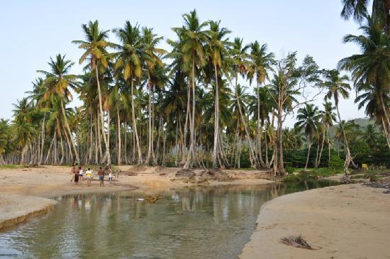Casa Coson : river