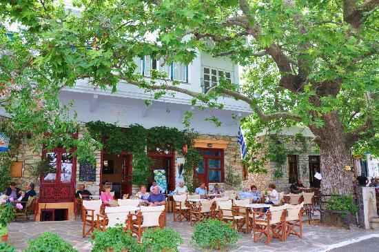 Hotel Grotta: lunch in filioi in the mountains