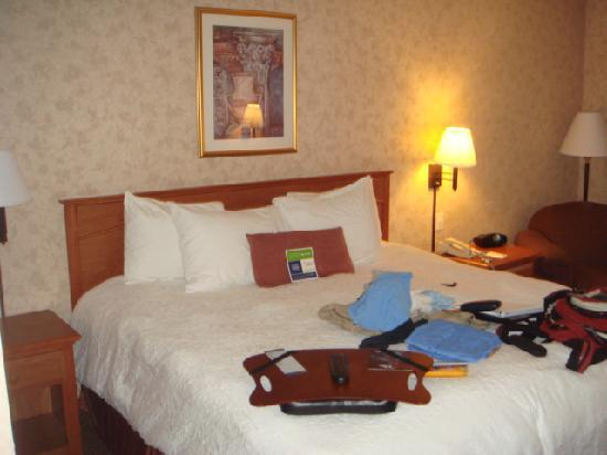 Hampton Inn Salt Lake City/Layton: bed