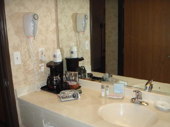 Hampton Inn Salt Lake City/Layton: bathroom1