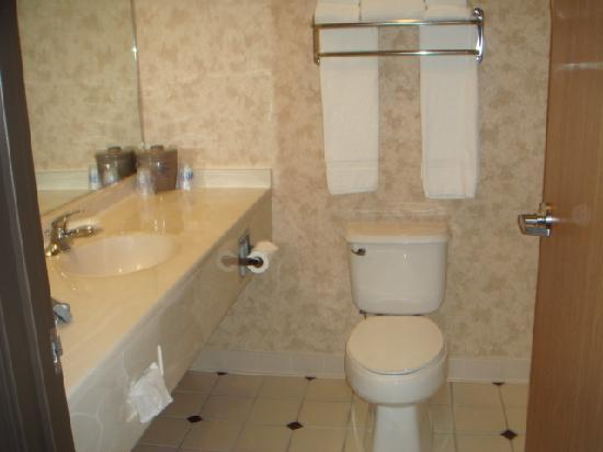 Hampton Inn Salt Lake City/Layton: bathroom2