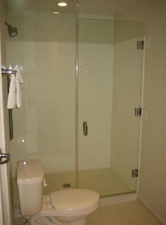 SpringHill Suites St. Louis Brentwood: Washroom