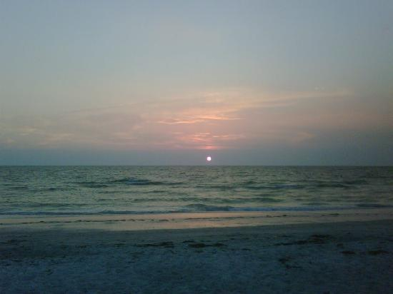 Belleair Beach Resort: nice sunset from the resort