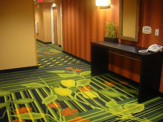 Fairfield Inn & Suites Lewisburg : Hallway