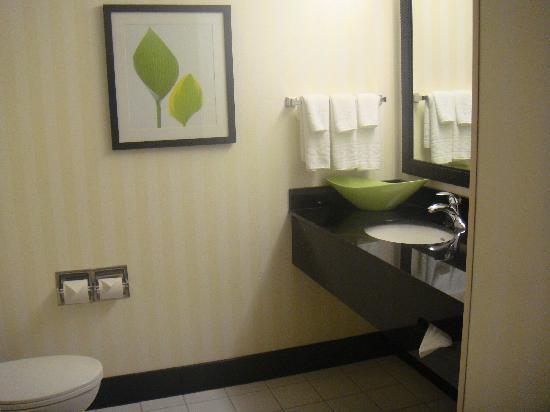 Fairfield Inn & Suites Lewisburg : Bathroom