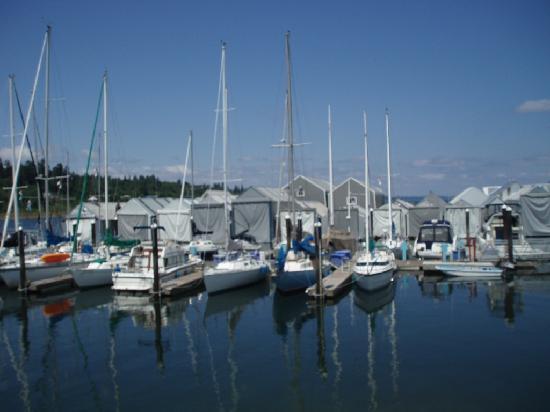 Olympia, WA: harborfront