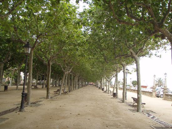 Hotel Neptuno & Apartments : promenade sur le bord de la plage