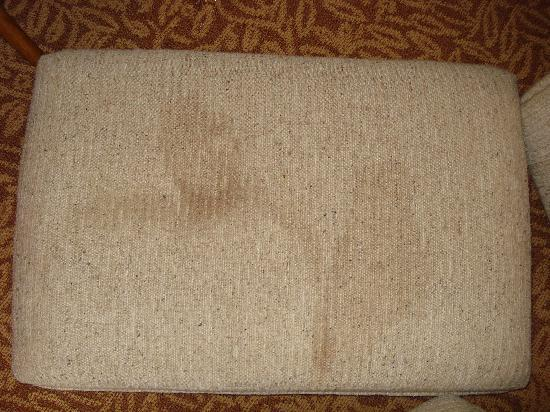 Rodeway Inn Lincoln : Filthy stained/soiled sofa cushion