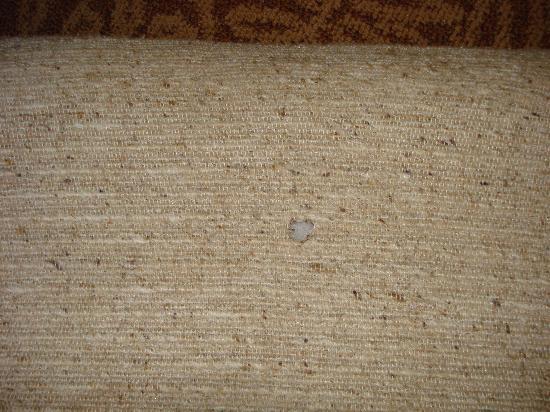 Rodeway Inn Lincoln : Cigarette burn in sofs cushion NON-SMOKING ROOM?