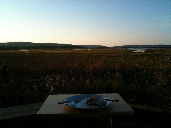 Castalia Marsh Retreat : Dinner with a view